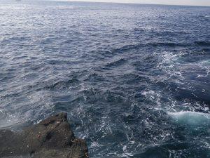 釣りで磯の写真