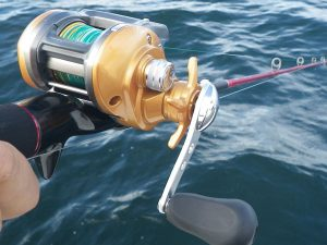 釣り具欲しい